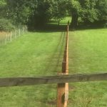 Wooden garden fencing dividing two gardens.
