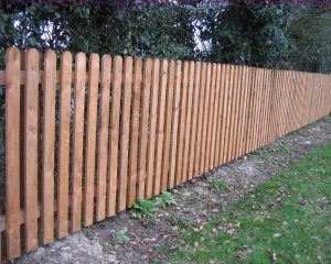 Paling Fencing