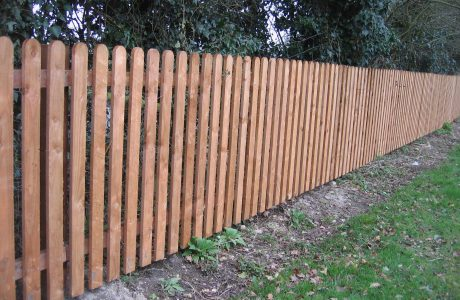 Feather edge fencing in a garden in Birmingham.