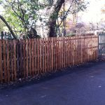 Wooden fencing at the edge of a forest like area.