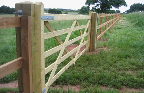 Five bar field gate alongside a wooden fence.