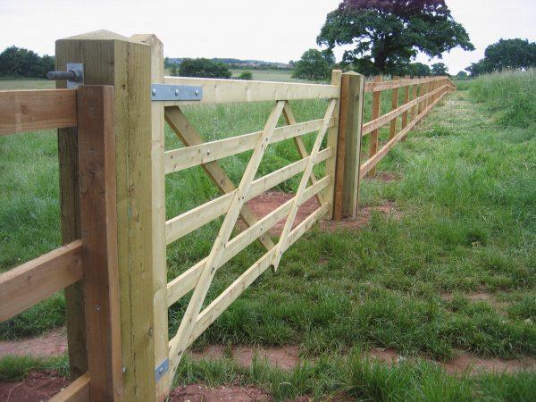 Five bar field gate alongside a wooden fence.