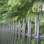 Black steel palisade fencing.