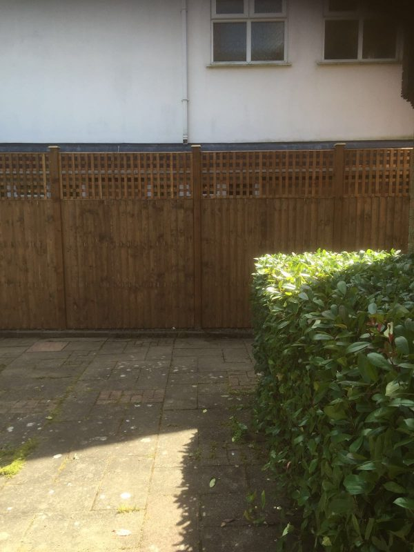 A garden yard with a wooden fence. The fence is v type with close board fence panels.