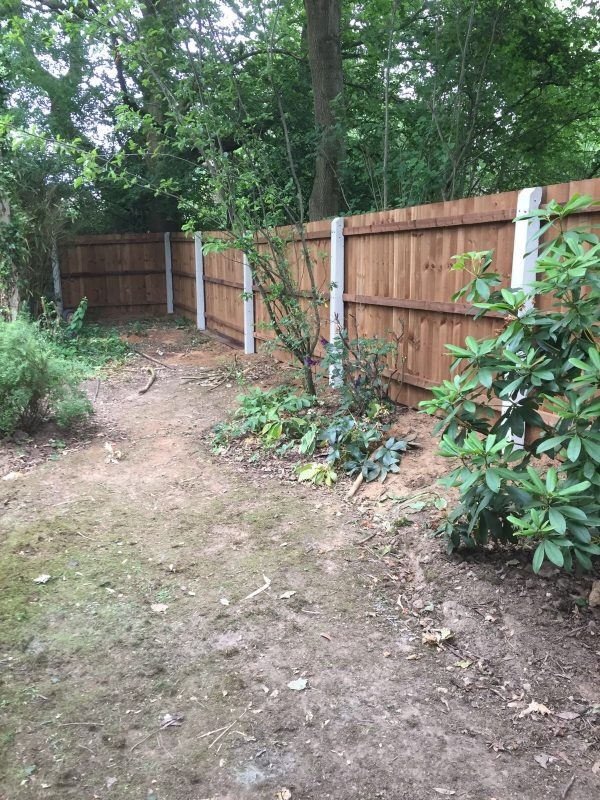 A garden with a wooden fence. The wooden fence has concrete fence posts.