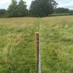 Post and wire fence stands in the middle of a field, it is used to house livestock or divide the area.